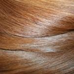 Aranybarna európai tresszelt póthaj (2)