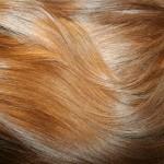 Aranybarna európai tresszelt póthaj (8)